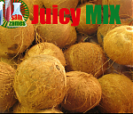 JM Coconut milk 5ml